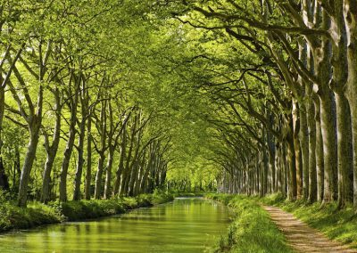 Spring look on Canal du Midi